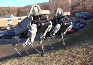 Robot Dogs