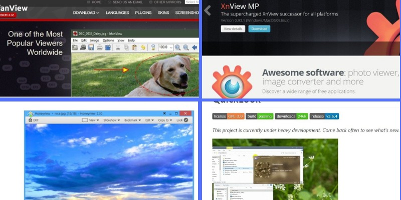 top image viewer software