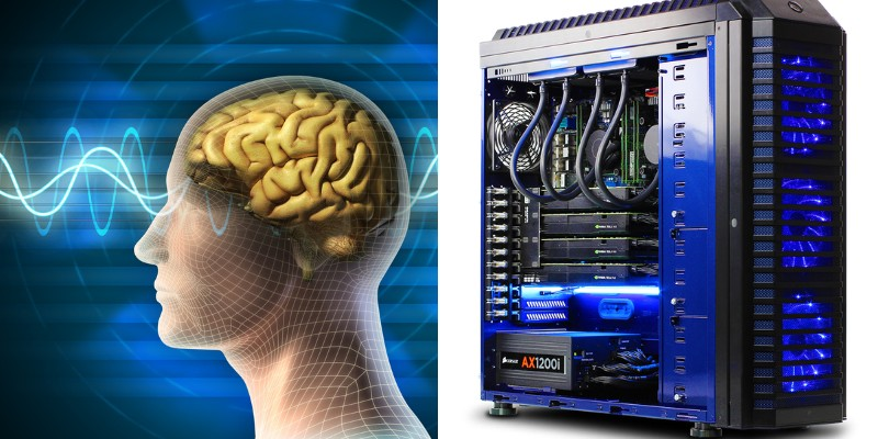 compare human brain and computer